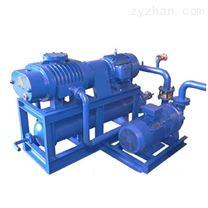 真空泵系統特點