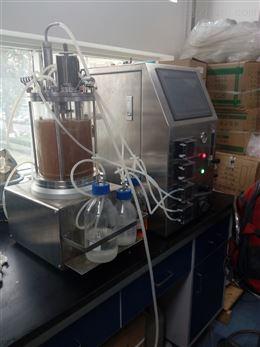 磁力搅拌玻璃发酵罐