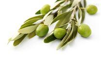 橄欖葉提取物羥基絡醇