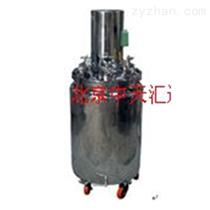 HTG-60/100型HTG系列真空搅拌系统