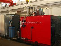 5吨燃气热水锅炉