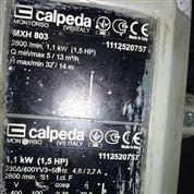 Calpeda意大利科沛达水泵