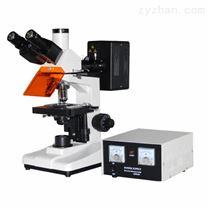 落射荧光显微镜YZF-10