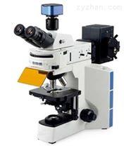 荧光显微镜WMF-3530