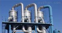 硫酸钠蒸发结晶器