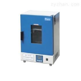 DGG-9246A电热恒温鼓风干燥箱