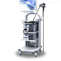奥林巴斯胃镜系统CV-190+CLV-190+GIF-H190+CF-HQ190L/i