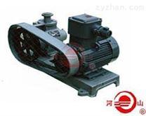 YB15-5型滑片式液化石油氣泵