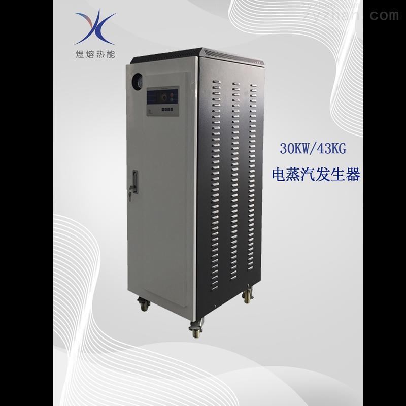 反应釜配套用30KW电蒸汽发生器
