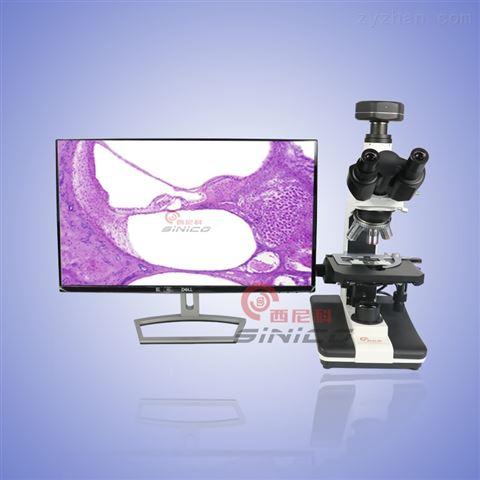 明暗场生物显微镜