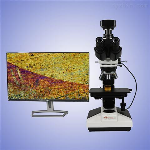 反射金相显微镜