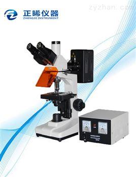 反射荧光显微镜ZFM-300
