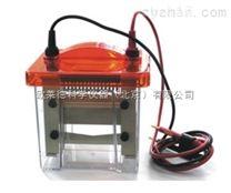 Mini VE1600便攜式廠家Mini VE1600迷你垂直電泳槽(蛋白電泳槽)