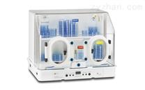 DG250-緊湊型厭氧工作站