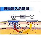 JR-CSA01晋瑞医用超声波治疗仪价格